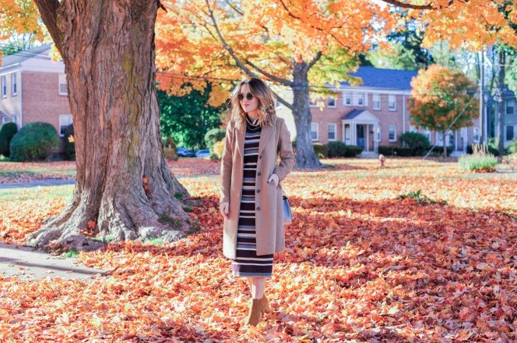 fall-leaves-horizontal-1